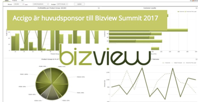 Accigo sponsrar Bizview Summit.jpg